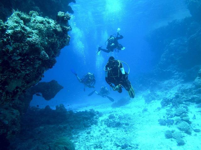 diving-813028_1280.jpeg