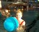 Galeria świąteczne aquababy
