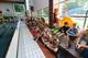 Galeria 2017 - puchar kocich gór