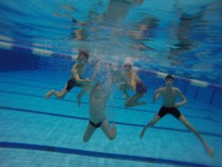 Galeria Sekcja Hydra Trzebnica na Międzynarodowych Zawodach Pływackich w Berlinie
