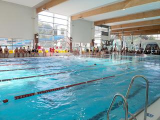 Galeria VI Zawody Pływackie o Puchar Kocich Gór i Doliny Baryczy